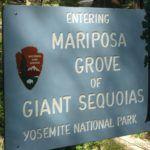 Entrada a Mariposa Grove