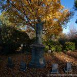 Cementerio de Mount Auburn