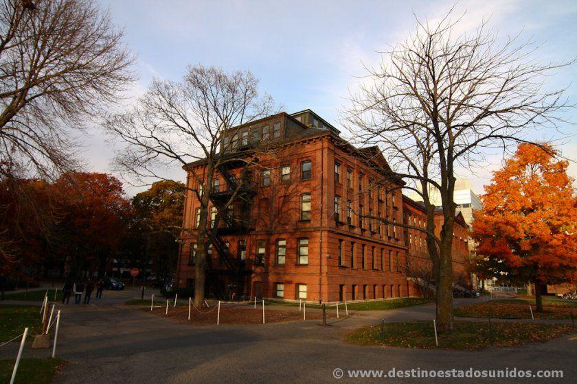 Colegios mayores de Harvard